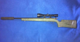 CZ Amercian 17 HMR B/A Rifle for sale image
